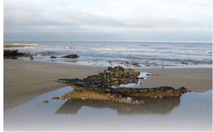 The remains of the Fernebo, a ship that sunk off Cromer in January 1917, which lies on Overstrand beach.