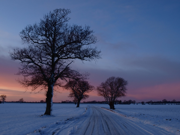 A snowy road in Tibbenham.