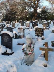 The headstones at Rosary Cemetery in Norwich were capped with snow after yesterday downpour.