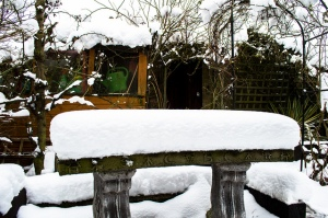 A back garden in Norwich this afternoon showing just how much snow the city has had. Credit: JasonBrown2013