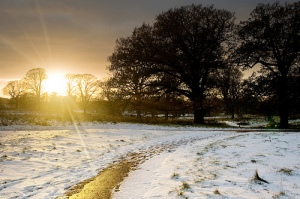 A snowy sunset in Norfolk. Picture credit: Paul Tomlin